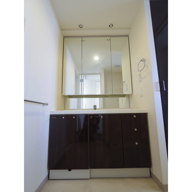 スカイレジデンシャルタワーズノースウイング 12F号室の洗面所