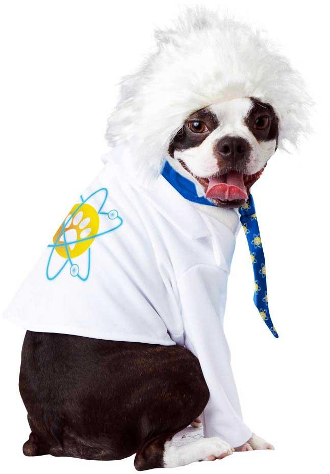 Brilliant-Physicist-Al-bark-Einstein-Pet-Dog-Costume-Wacky-Hairdo-Tie-Shirt miniatuur 4