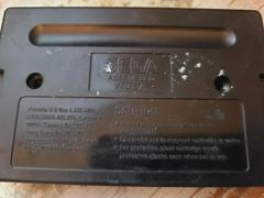 Cartridge (Reverse)   ToeJam and Earl in Panic on Funkotron Sega Genesis