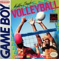 Malibu Beach Volleyball | GameBoy