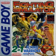 2 In 1: Flying Warriors / Fighting Simulator GameBoy Prices