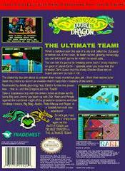 Battletoads And Double Dragon - Back  | Battletoads and Double Dragon The Ultimate Team NES