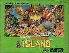 Adventure Island - Instructions | Adventure Island NES
