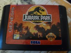 Cartridge (Front) | Jurassic Park Sega Genesis