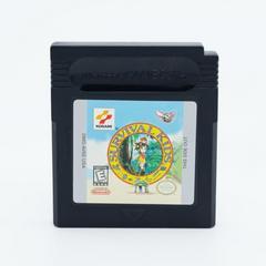 Cartridge | Survival Kids GameBoy Color