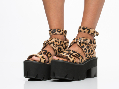 Jeffrey Campbell In Brown Leopard Black Weymouth