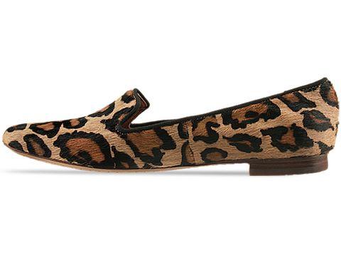 Sam Edelman In Leopard Brahma Alvin Animal Print