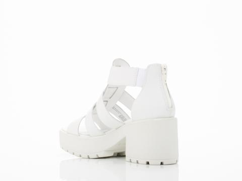 Vagabond In White Dioon 3947 701