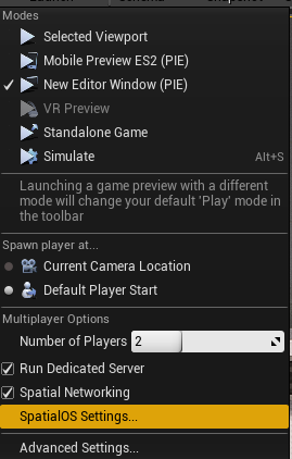Multiplayer Options