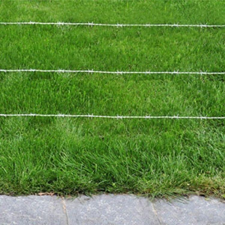 Drut kolczasty, długość: 500 m.