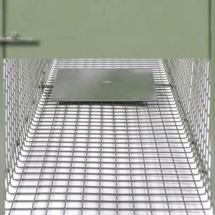 Pułapka żywochwytna z 2 drzwiczkami, 150 x 30 x 30 cm
