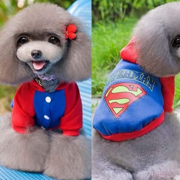 Bluza na napy superman ubranko dla psa