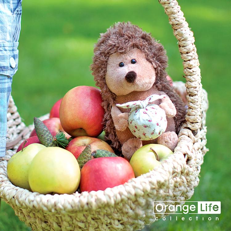 Przytulanka Jeżyk z tobołkiem Orange Toys - 18cm