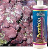 Carib Sea PurpleUp - 1 gal