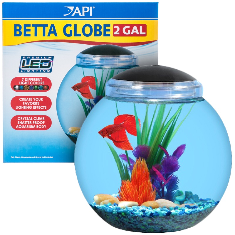 Api betta globe aquarium kit 1 5 gal for Betta fish tanks petsmart