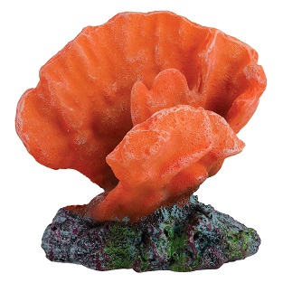 "Underwater Treasures Acro Coral - Orange - 2.5"""