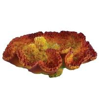 Underwater Treasures Table Sun Coral - 2.25""
