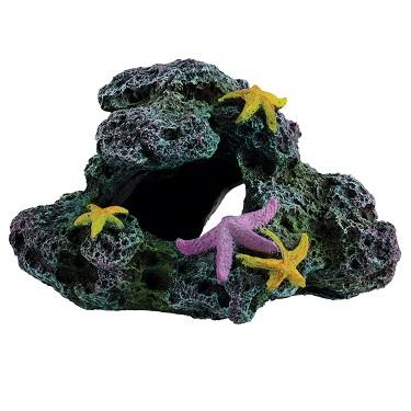Underwater Treasures Reef Starfish Cave