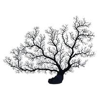 Underwater Treasures Sea Fan Coral - Black