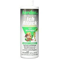 Kordon Ich Attack - 16 fl oz