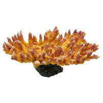 Underwater Treasures Acropora Coral - Golden