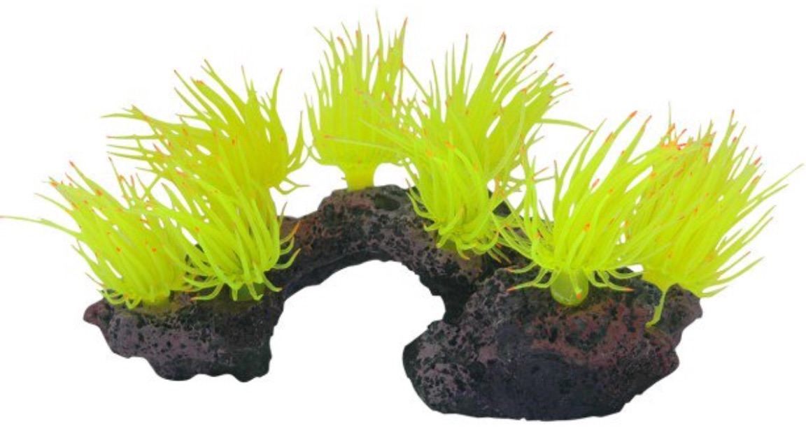 Underwater Treasures Anemone Cluster on Rock - Yellow