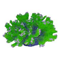 Underwater Treasures Aussie Branch Coral - Green