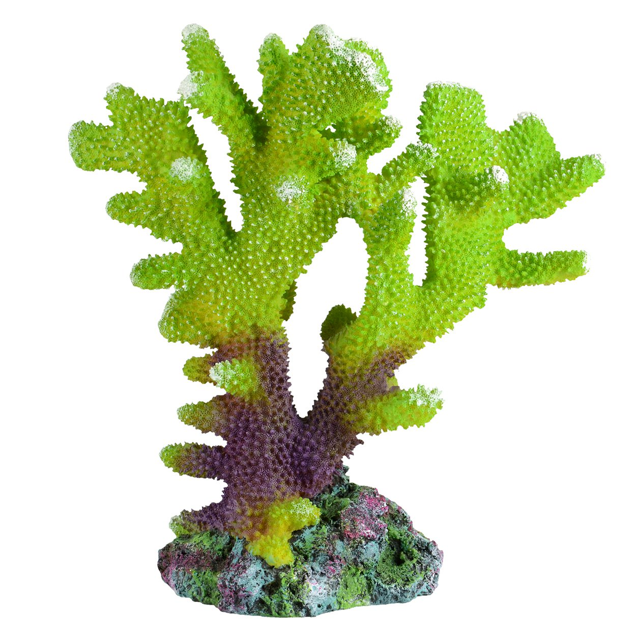 Underwater Treasures Branch Coral - Pacific