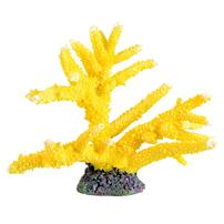 Underwater Treasures Branch Coral - Sun