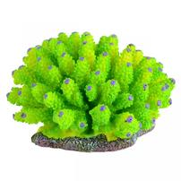 Underwater Treasures Green Tube Coral