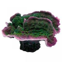 Underwater Treasures Montipora Coral - Purple Rim