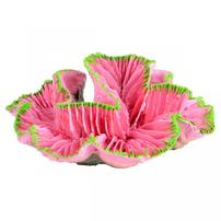 Underwater Treasures Open Brain Coral - Pink - Small