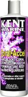 Kent Coral Accel 64 oz.